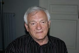 Divjak freed on bail