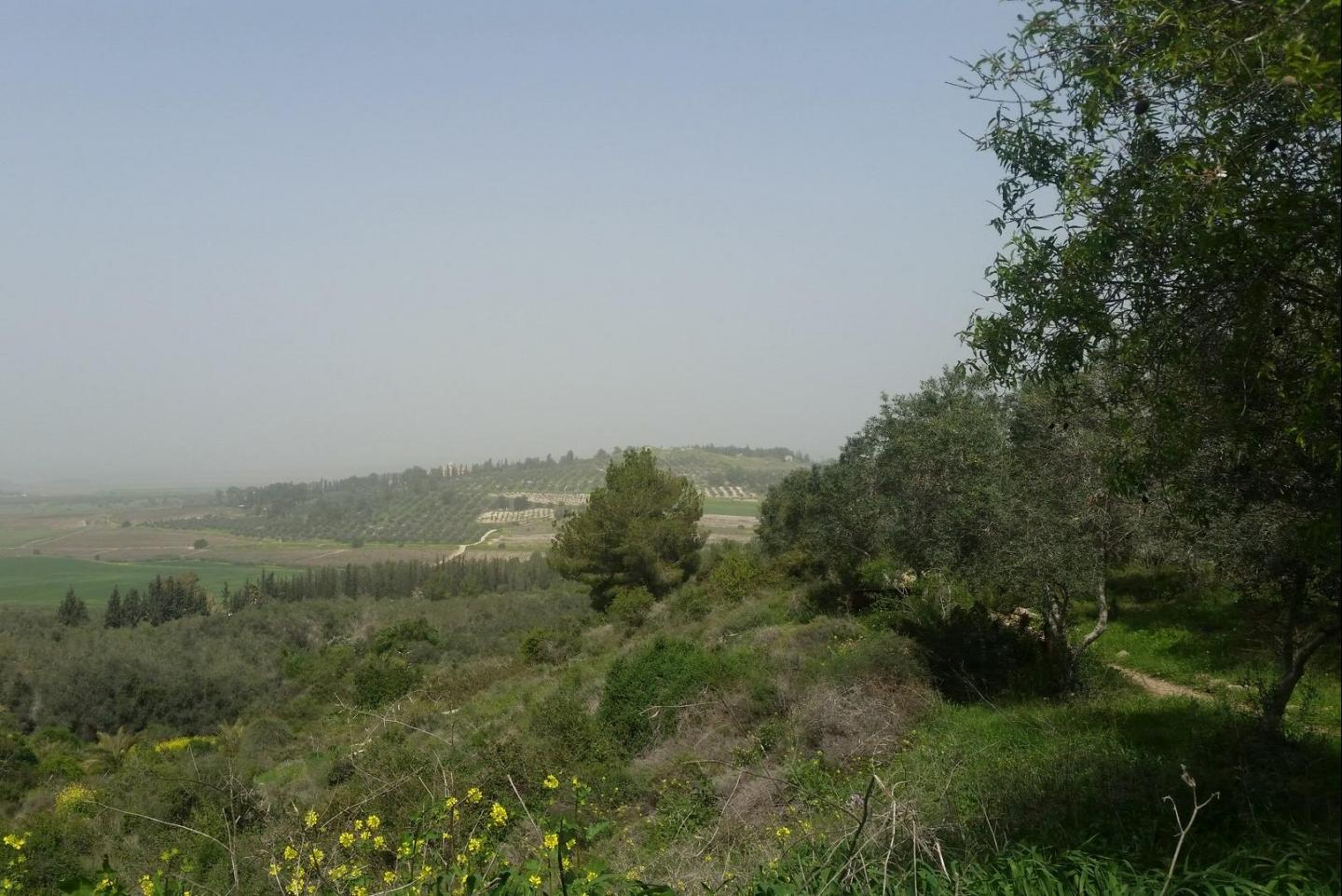 View from the hill of Neve Shalom - Wahat Al-Salam