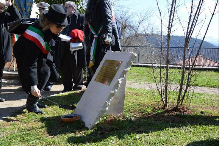 The planting of the tree in honour of Card. Vincenzo Fagiolo