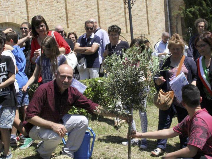 Moments of the planting of the tree