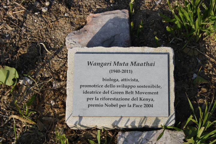 The plaque in honour of Righteous Wangari Muta Mathari