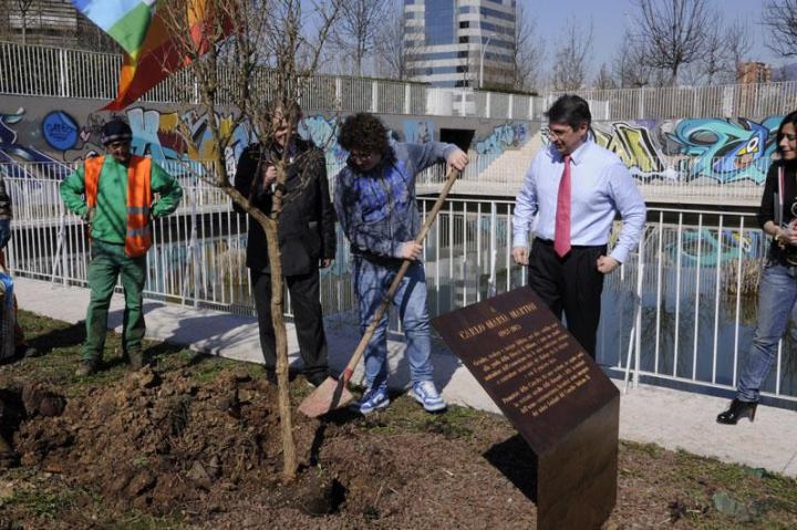 The planting of the Carlo Maria Martini' tree