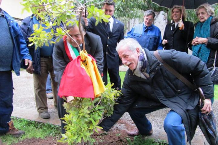 The tree' planting  with the Mayor Orlando