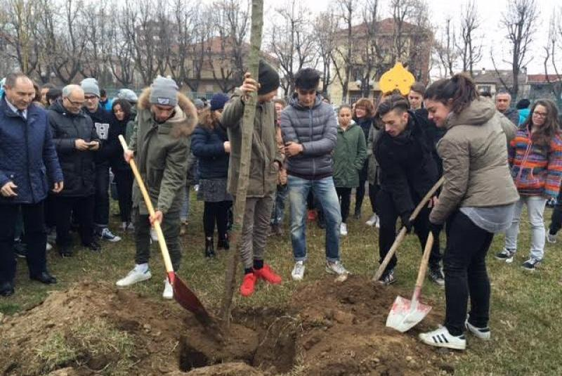 Students of Vercelli during the planting of the cherry trees