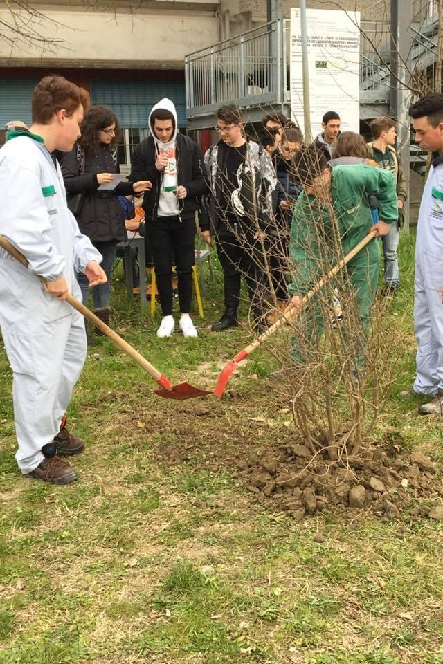 Students of TI Calvi during the planting of the tree in honour of Don Benedetto Richeldi