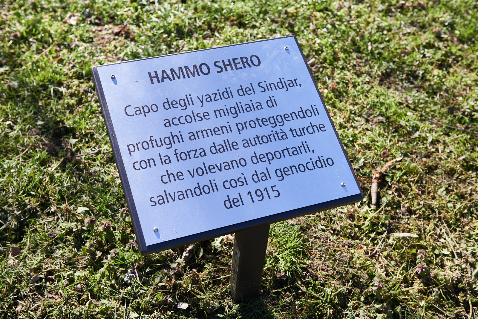 Plaque for Hammo Shero
