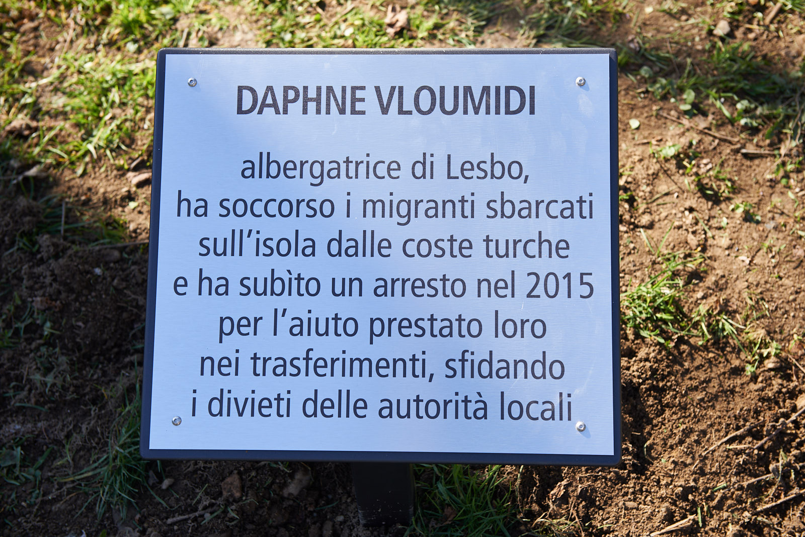 Plaque for Daphne Vloumidi