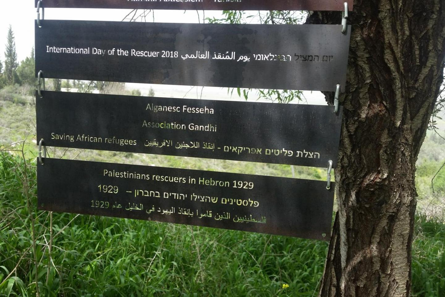 The Righteous honoured: Alganesh Fessaha and the Palestinians who saved the Jews during the massacre of Hebron