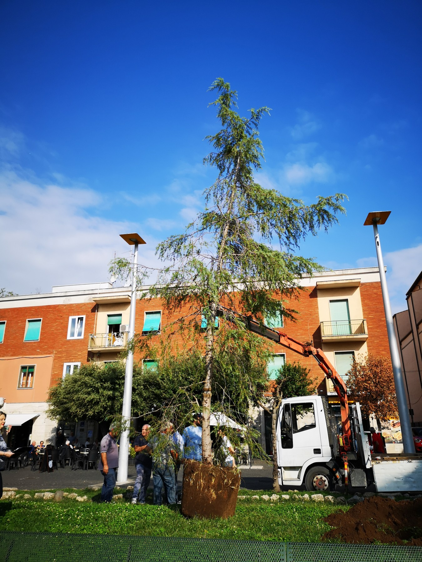 Workers of the Municipality planted the Tree