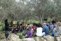 at the Garden of Neve Shalom Wahat al Salam