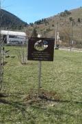 in Bussi sul Tirino for Gino Bartali