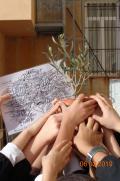 In the primary school of the Convitto C. Colombo in Brescia a plant for the Righteous