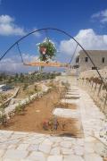 The Garden of Kfarnabrakh